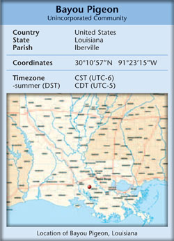 Bayou Pigeon, Louisiana State Map