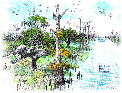 <em>Bayou Pigeon, La. - Spirit of the Atchafalaya</em> is a 688-page, 9x12-inch coffee table book filled with more than 900 custom illustrations, vintage photographs, maps, charts, and historical documents. The compelling narrative takes you on a journey through the history of the small Cajun community of Bayou Pigeon, Louisiana and the changes that occurred to the culture and the landscape.